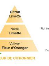 aroma-fleur-de-citronnier-lampe-berger-piramide