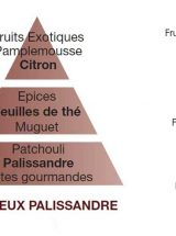 lampeberger-aroma-precieux-palissandre-piramide-olfativa