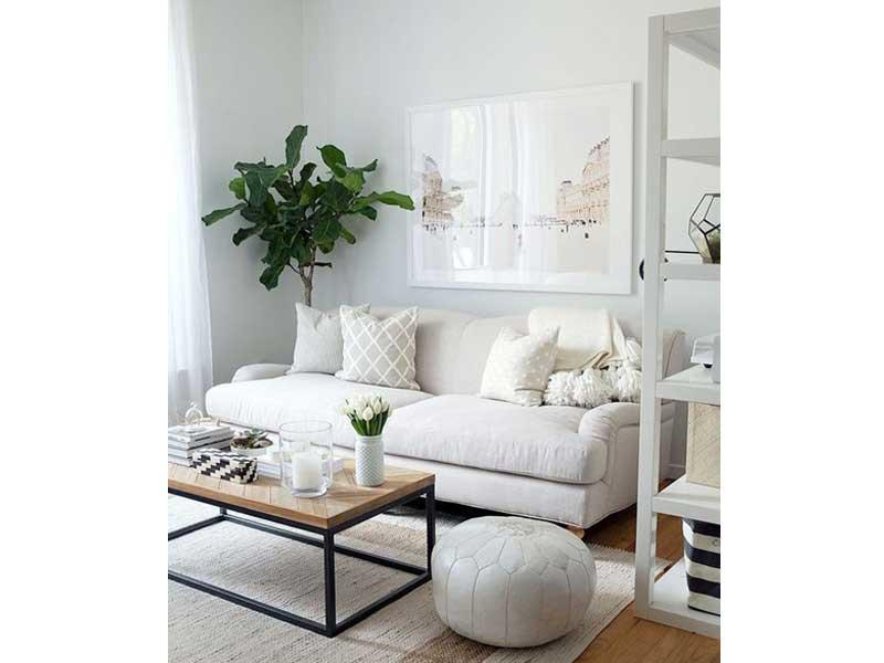 sofa-pequeño-salon-blanco