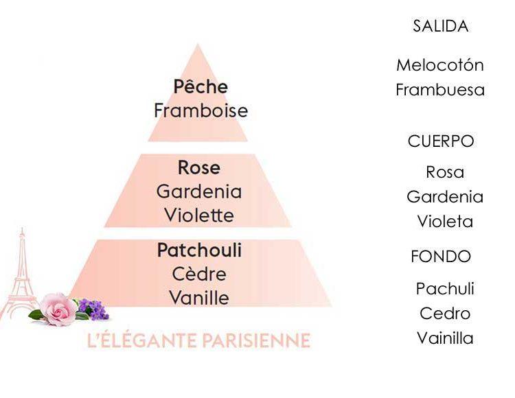elegante-parisienne-piramide-olfativa-lampeberger