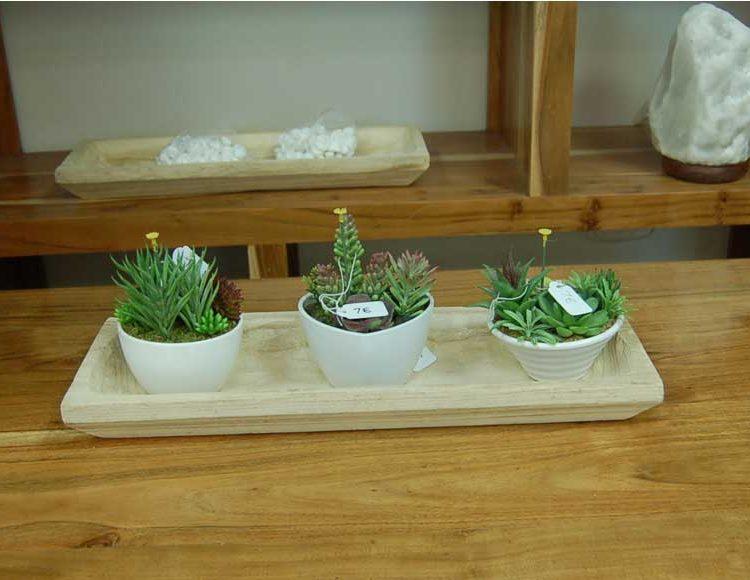 centro-mesa-madera-rectangular-plantas