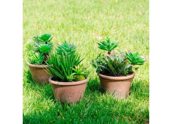 planta-artificial-tienda-madrid