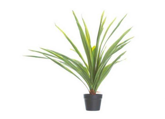 planta-artificial-palmera-yuca