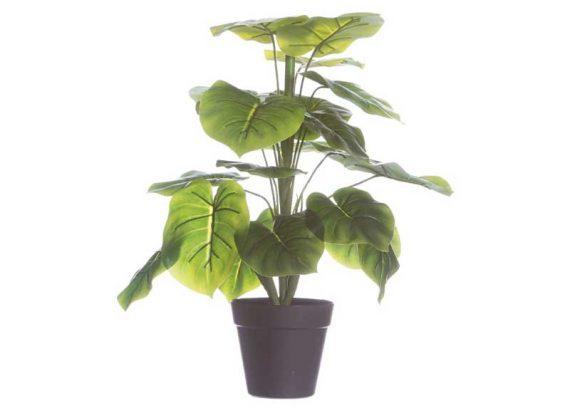 planta-artificial-verde-hoja-ancha